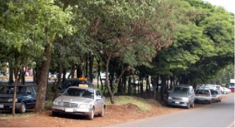 autos estacionados en la vereda